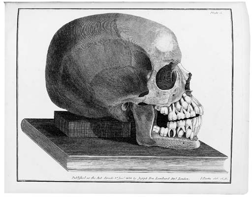 FOX, Joseph (1776-1816). The Natural History of the Human Teeth. London: T. Plummer for Thomas Cox, 1803. 4° (265 x 218mm). 13 engraved plates by I. Parks after G. Kirtland, Franklin, and I. Parks. (Occasional light ink spotting, some light browning, light marginal dampstaining on a few plates and text leaves, skilful marginal repair on title.) Provenance: occasional marks and textual amendments in pencil.