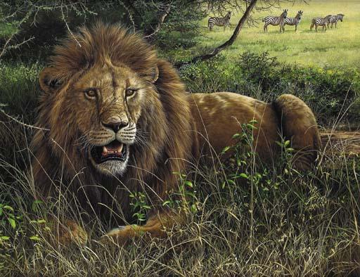 Jeremy Paul (B.1954), British , The Serengetti Lion
