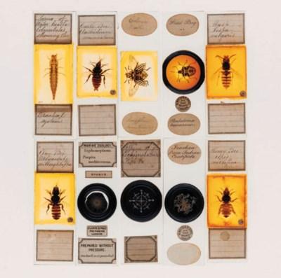 A 19th-Century mahogany micros