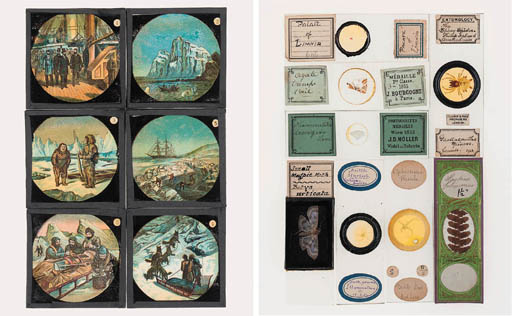 A collection of miscellaneous entomological and other microscope slides,
