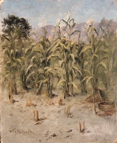 Grace Carpenter Hudson (1865-1