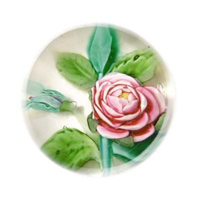 A PANTIN ROSE WEIGHT