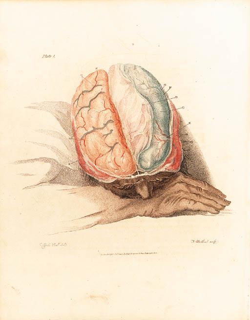 BELL, Sir Charles. The Anatomy