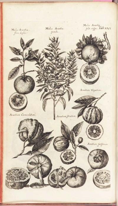 JONSTON, John (1603-1675). His