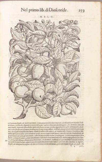 MATTIOLI, Pietro Andrea (?1500