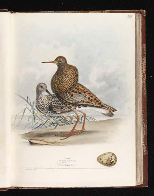 MEYER, Henry Leonard (d.1864).