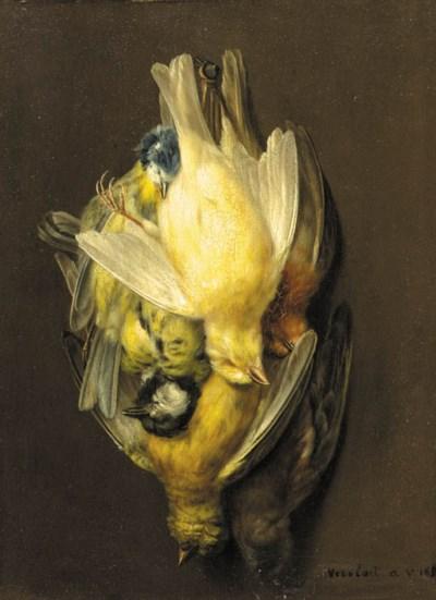 Augustine Vervloet- Croquet (B