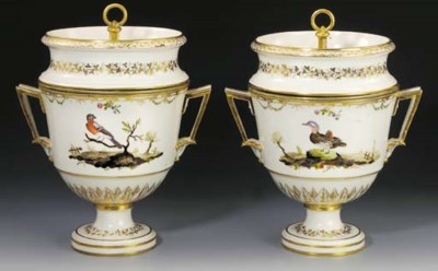 A pair of Continental ornithol