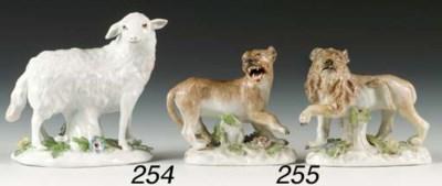 A Meissen model of a ewe
