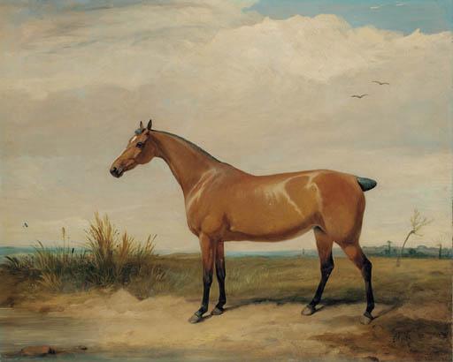 Thomas Woodward (1801-1852)