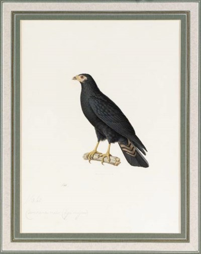 Nicolas Hüet (1770-1830), Jean