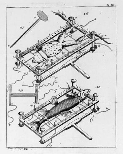ADAMS, George, 'Micrographia I