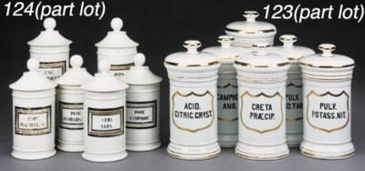 A set of fourteen porcelain ph