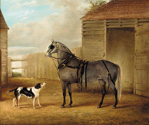 John Vine (1809-1867)