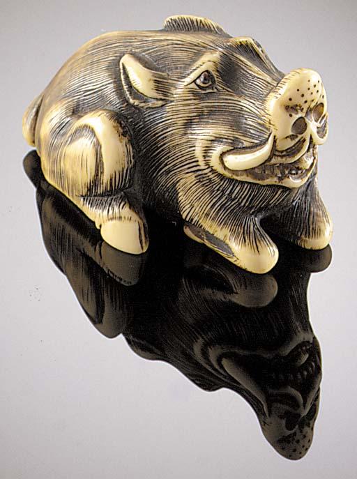 An ivory netsuke of a boar 18t
