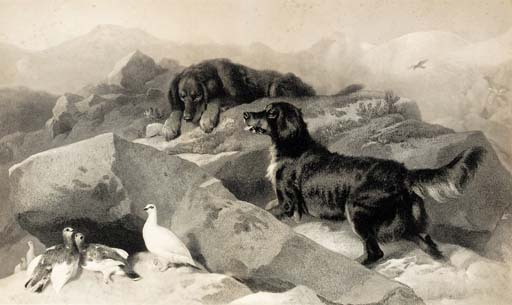After Sir Edwin Landseer, R.A.