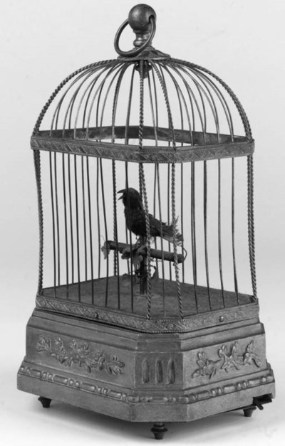 A singing bird in cage,