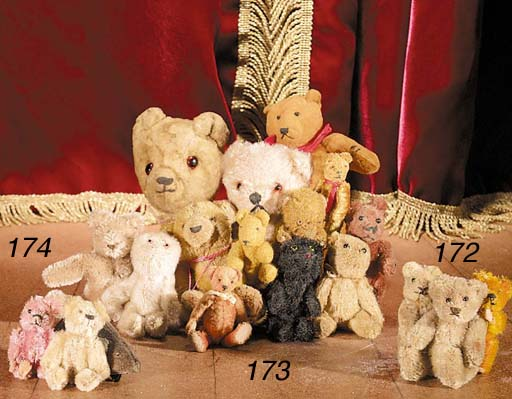 A British miniature teddy bear