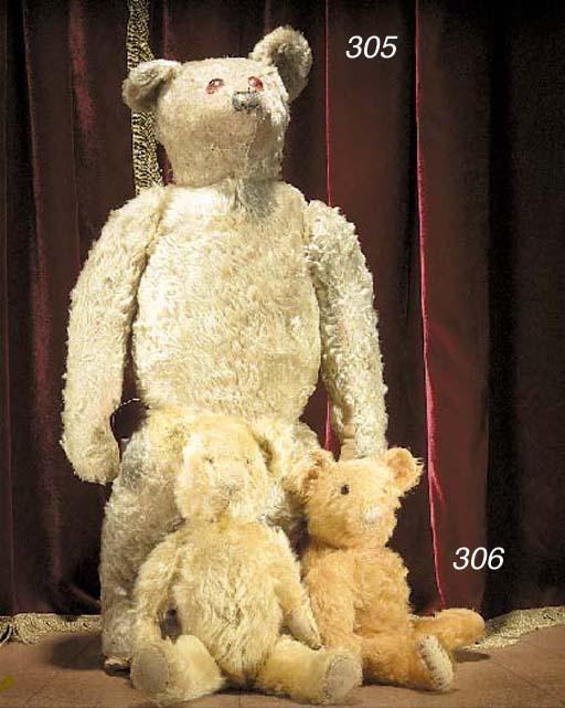 An Australian teddy bear