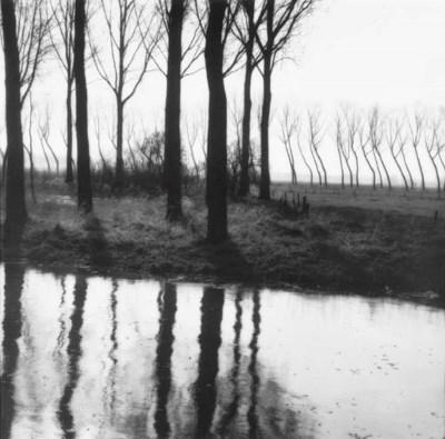 LYNN GEESAMAN (BORN 1938)