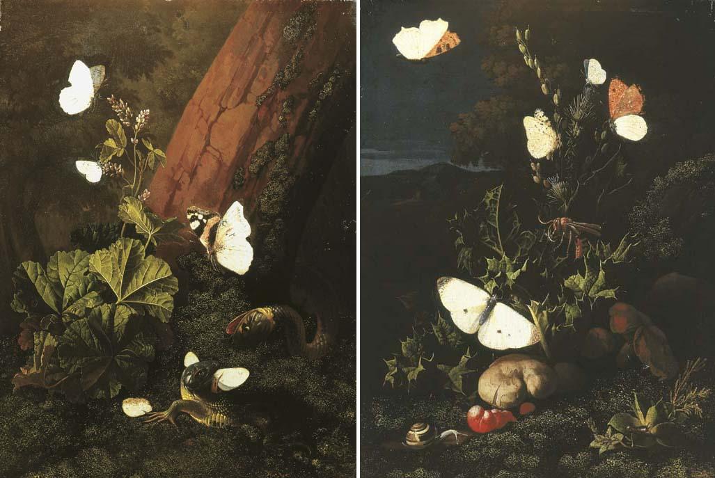 Elias van den Broeck (1650-170