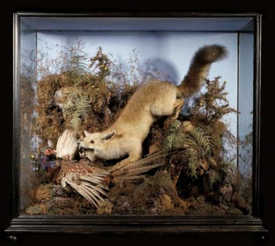 A CASED FOX AND PHEASANT