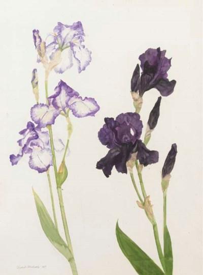 Elizabeth Violet Blackadder, R