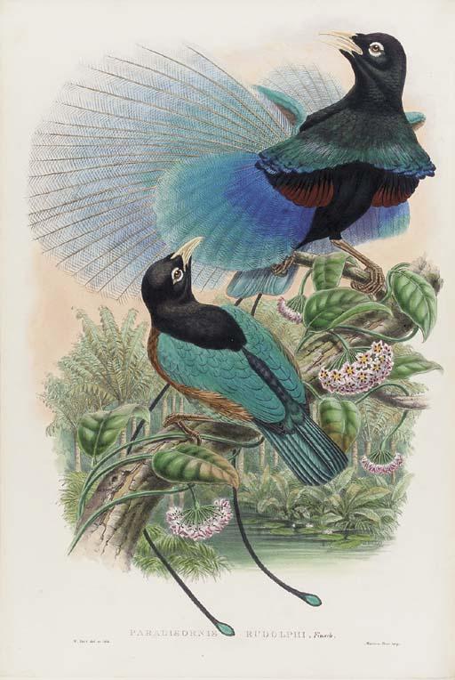 Richard Bowdler Sharpe (1847-1