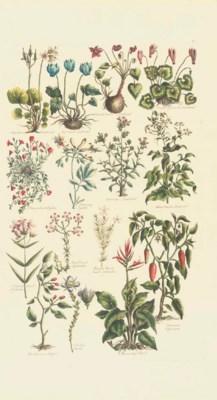 HILL, John (1716/17-1775). The
