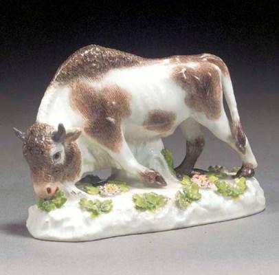 A Meissen model of a bison