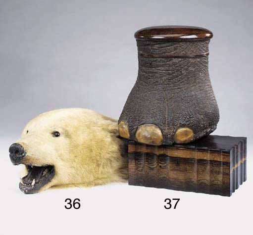A stuffed polar bear's head fo