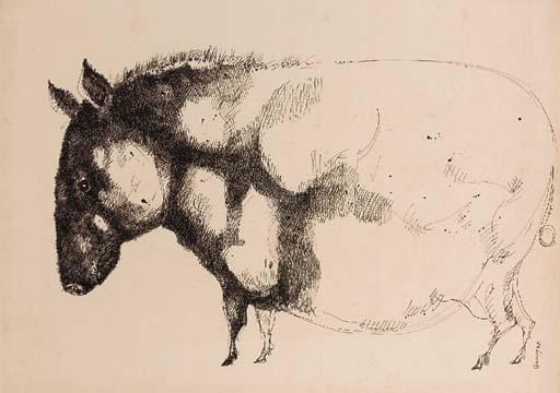 A Large Pig Gopal Sanyal (b. 1