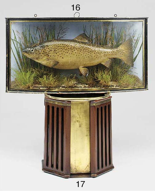 A George V fishing trophy, dat