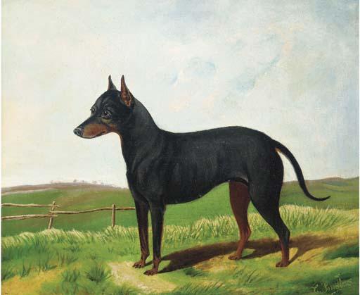 C. Smith, 19th Century