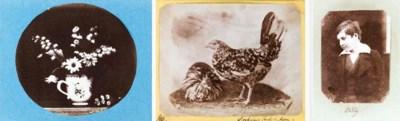 MARY DILLWYN (1816-1906)