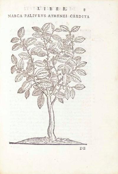 ALPINUS, Prosper (1553-1617).
