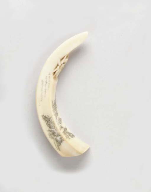A Boar's Tusk Netsuke**