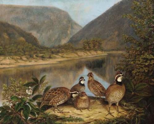Titian Ramsey Peale (1799-1885