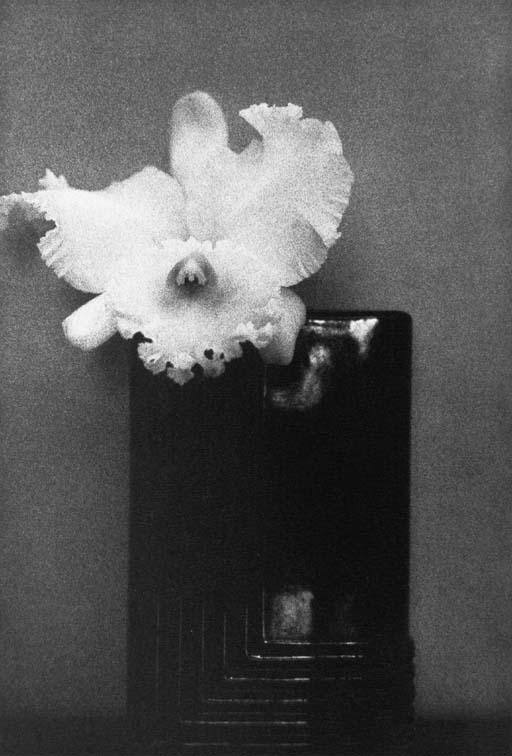 SHEILA METZNER (BORN 1939)