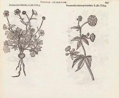 LOBEL, Matthias de. Plantarum
