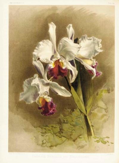 SANDER, Henry Frederick Conrad