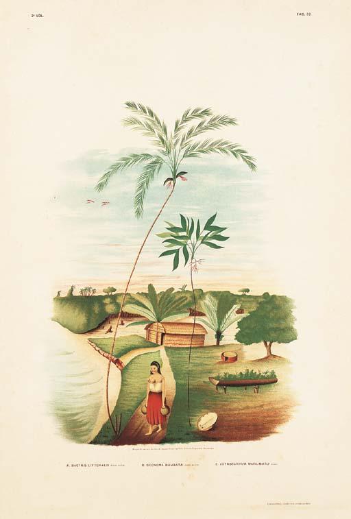 BARBOSA RODRIGUES, João (1842-