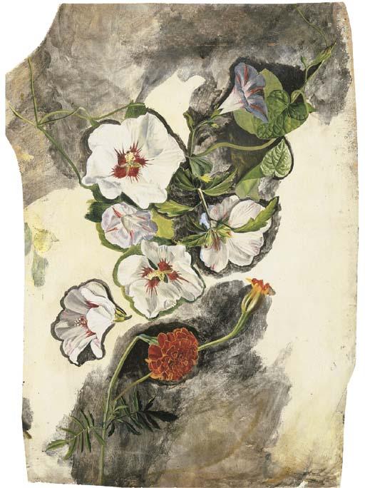 Eloise Harriet Stannard (fl. 1