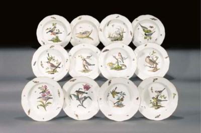 Twelve Meissen ornithological