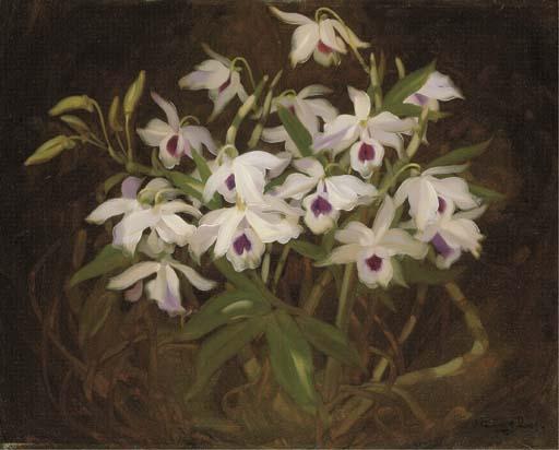 James Stuart Park (1862-1933)