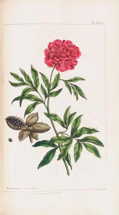MILLER, Philip (1691-1771) [?a