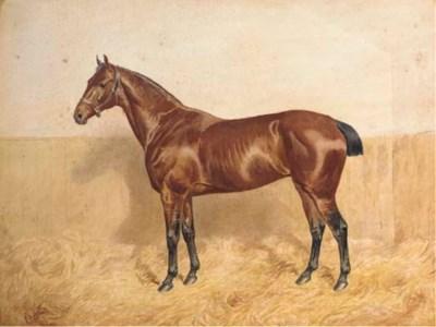 Alfred Bright, circa 1895