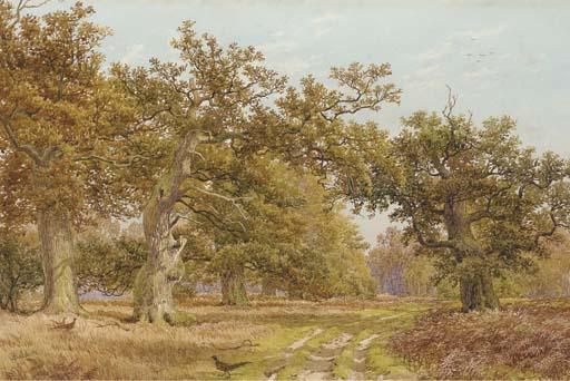 J. Baldock, 19th Century
