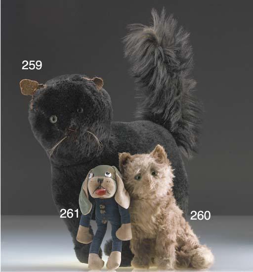 A large British black cat