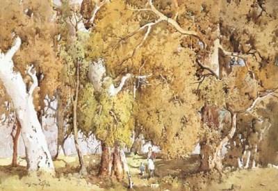 MATTHEW JAMES MACNALLY (1874-1